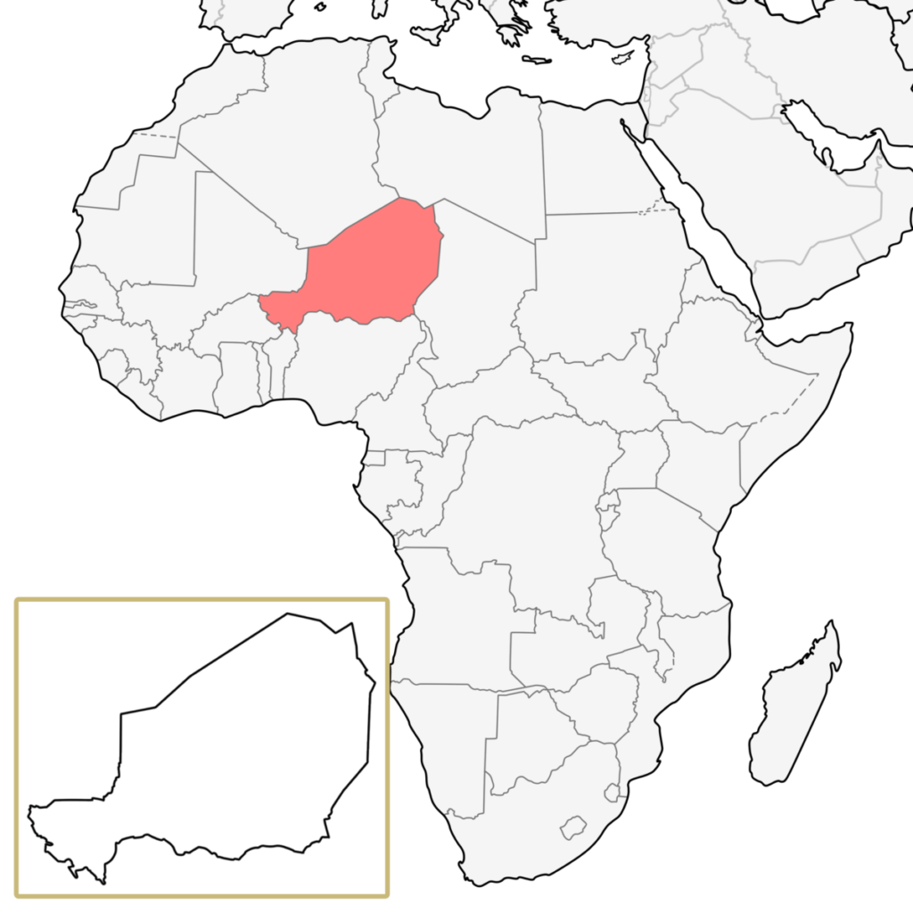 ニジェール アフリカ 地図